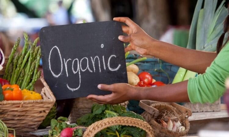 How To Start An Organic Lifestyle In 5 Easy Ways
